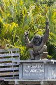 Tanjung Puting National Park, Sekonyer river, Sekonyer village, entrance of the National Park with an orang utan statue, Borneo, Indonesia