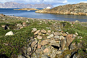 Stone house of a paleo-eskimo camp on the Bear Archipelago at the bottom of the Scoresby Sund, Greenland