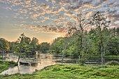 Skroblus River in Dzukijos National Park, Lithuania, Europe