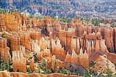 Sandstone formations, rock needles, Bryce Canyon National Park, Utah, U.S