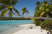 Aitutaki. Cook Island. Polynesia. South Pacific Ocean. Beach in One Foot Island. One Foot Island is asmall island in the district of Aitutaki of the Cook Islands in Australia. It is also known as Tapuaetai and is one of 22 islands of the atoll. You can only reach this island via a short boat trip from the main island. It is said that One Foot Island gives the visitors the best view of the Aitutaki lagoon. It was awarded ôAustralia's Leading Beachî at the World Travel Awards held in Sydney in June 2008. The island is uninhabited, but you can buy small things at the local shop. The beaches of OneFoot Island are white, and the water is crystal clear. This is not only a paradise for divers and snorkelers but also for those wanting to enjoy the beach and the sand. Climate: Since the islands are South of the equator, the seasons are opposite to those of Europe and North America. The cooler, drier season is from April to November and the warmer, more humid season is from December to March. The average temperature is 27 Celsius. Regularly listed as one of the most romantic places on Earth, and the second-most visited island in the Cooks, Aitutaki is famous for its impossibly crystal-clear, turquoise water of its central lagoon, tiny motus (islets) and pristine, palm-shaded beaches. Inland, Aitukati's rolling hills are a patchwork of banana plantations and coconut groves. 220 kilometres from Rarotonga and easily accessible by air, flying over Aitutaki is breathtaking. The immense, turquoise lagoon appears to float on the deeper blue of the Pacific, and is speckled with 15 uninhabited motus and brightly coloured corals just below the shimmering liquid surface. this is the ultimate blue lagoon. A leisurely walk to the summit of Aitutaki's highest peak, Maungapu, might only reach an elevation of a little over 120 metres, but it delivers sweeping views that are sure to leave you breathless. Another popular spot is the beautiful One Foot Island, where the TV show Survivor w