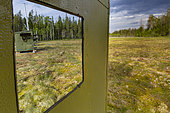 Observatories for the observation and photography of brown bears (Ursus arctos) near a peat bog in Suomussalmi, Finland