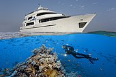 Above: liveaboard, diving boat, Seven7Seas, down divers, coral reef, shoal of fish, Red Sea, Egypt, Africa
