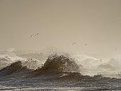 Rough seas off North Norfolk in winter