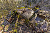 Wrecks of abandoned vintage cars in a wood, Savoie, France