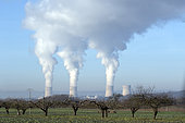 Cattenom nuclear power station in winter in good weather with blue sky and plumes of steam from 3 cooling towers, from the surrounding countryside with an orchard in foreground, Moselle, Lorraine, France