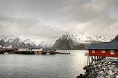 Hamnøy, Moskenes, Lofoten Islands, Nordland, Norway