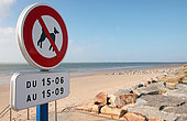 Restriction for dogs on the beach in summer, Littoral department of Manche, Coudeville-sur-Mer, Manche, Normandy, France