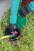 Protection of watering before winter: purge the circuit and check the valves.