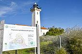Lighthouse of La Gacholle, Camargue National Reserve, France