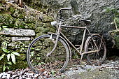 Old abandoned bicycle in nature, Haut Doubs, France