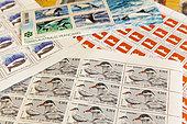 Détail de timbres, cachets et plis postaux à la gérance postale de la Base antarctique Dumont D'urville. Philatélie des TAAF. Terre Adélie, Antarctique