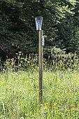 Rain gauge in a garden in summer, Auvergne, France