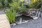 Small pond in a garden in summer, Auvergne, France