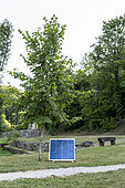 Solar panel powering a pump in a garden in summer, Lot, France