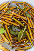Realization of willow water for cutting. The willow bark extract in water acts as a cuttings hormone.