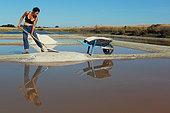 Salt marsh, salt worker, Noirmoutier Island, Vendée, France