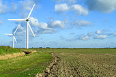 Polders with wind turbines in Bourgneuf bay, Vendée, France