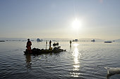 Kayakers pulling their kayaks on sandy shoals, in Scoresbysund, North East Greenland