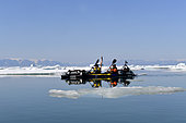 Kayakers in Scoresbysund, North East Greenland