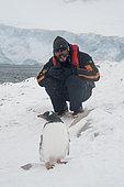 A tourist with a gentoo penguin (Pygoscelis papua), Neko Harbour, Antarctica.