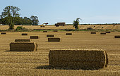 Straw bale been collected in the British countryside