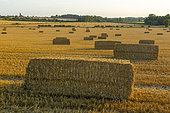 Straw bale in the British countryside