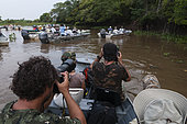 Photo safari on Cuiaba river, Pantanal, Mato Grosso, Brazil
