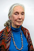 Jane Goodall, British primatologist, anthropologist, ethologist and UN Messenger of Peace, considered to be the world's foremost expert on chimpanzees.