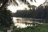 Rio San Juan, Nicaragua.