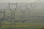 High Tension Lines between Magalas and Laurens, Hérault, France