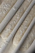"""Dough rising on a baker's linen or """"Couche"""""""