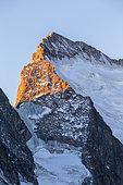 La Barre des Écrins (4101m) and its snow dome, Vallouise valley, Briançonnais region, Ecrins National Park, Hautes-Alpes, France