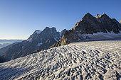 View of Mount Pelvoux (3932m) and the Pointe de la Grande Sagne (3660m), in the foreground the White Glacier (3023m), Valley of Vallouise, Briançonnais region, Ecrins National Park, Hautes-Alpes, France