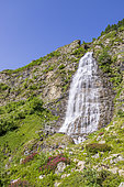 The waterfall of the Veil of the Bride, Gioberney, La Chapelle-en-Valgaudemar, Ecrins National Park, Hautes-Alpes, France