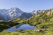 Reflection of Sirac (3441m) on Lake Lauzon (2008m), La Chapelle-en-Valgaudemar, Ecrins National Park, Hautes-Alpes, France