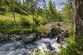 The Oulles du Diable gorges, the waters of the Navette and the Gallo-Roman bridge, the Portes, Chapelle-en-Valgaudemar, Ecrins National Park, Hautes-Alpes, France