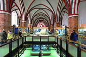 The Stralsund Museum has various collections such as the natural history one, open in 1858 in the St Catherine's monastery, Stralsund, Mecklenburg-Vorpommern, Germany