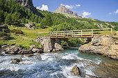 Footbridge on the Drac, Prapic, Orcières, Champsaur, Écrins National Park, Hautes-Alpes, France