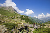 Footbridge on the Drac at Saut du Laire, Prapic, Orcieres, Champsaur, Écrins National Park, Hautes-Alpes, France