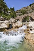 Gorges de la Méouge, the 14th century Romanesque bridge, Baronnies Provençal regional park, Hautes-Alpes, France