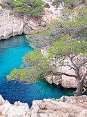 Calanque de Sugiton, Calanques NP Marseille, Provence, France