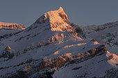 Sex Rouge summit, Massif des Diablerets, Bernese Alps, Vaud, Switzerland