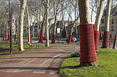 Plane trees protected by TPC sheaths for future work at Versailles, France