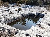 Aiguier du jas du pin, Luberon, Vaucluse, Provence, France