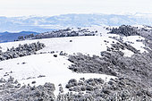 Snow on the crests of Grand Luberon, Vaucluse, Provence, France