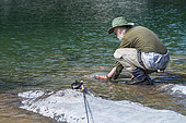 Atlantic Salmon (Salmo salar) fishing, Great River, Salmon River, Chaleur Bay, Gaspesie, Quebec, Canada
