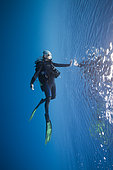 Scuba Diver at Water Surface, South Male Atoll, Indian Ocean, Maldives