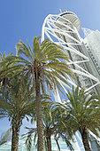 Date palm (Phoenix dactylifera), Park of Nations, Vasco de Gama tower, Lisbon, Portugal