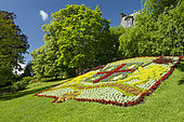 Coat of arms of the city of Clermont-Ferrand in mosaiculture, jardin Lecoq, Clermont-Ferrand, Puy-de-Döme, France